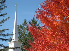 steeple autumn